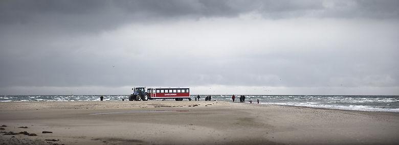 Traktor-bussen Sandormen kører turister det sidste stykke ud til Danmarks nordligste spids, hvor Kattegat og Skagerrak mødes.<br />Foto: Kasper Monty