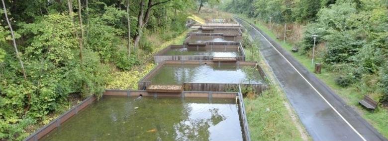 Vandledningssti i Gladsaxe - en sikker og hurtig skole-cykelsti hånd i hånd med kreative regnvandsløsninger. Den nye sti kobler to cykelstier sammen og skaber mere sammenhæng mellem områdets stier. Samtidig vil en nyanlagt å og en række åbne regnvandssøer håndtere regnvandet langs stien.<br />Foto: Nordvand