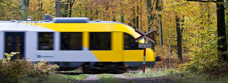 Ifølge Danske Regioner er der også behov for nye spor på dele af Gribskovbanen inden for en kort årrække. <br />Foto: Anders Tvevad, Biofoto, Ritzau Scanpix