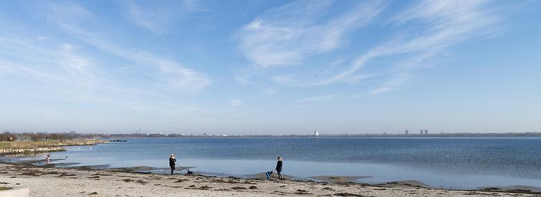 Hvidovre Strandpark med udsigt over Kalveboderne.<br />Foto: Torben Christensen, Ritzau Scanpix