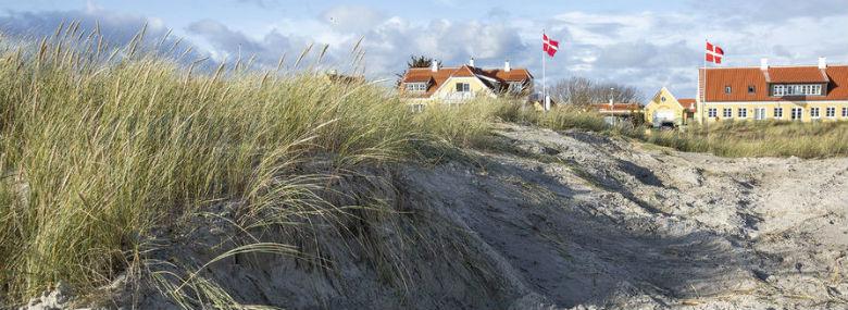 Klithærværk på fredet strandomåde ved Skagen Sønderstrand<br />Foto: Søren Schnoor, Ritzau Scanpix