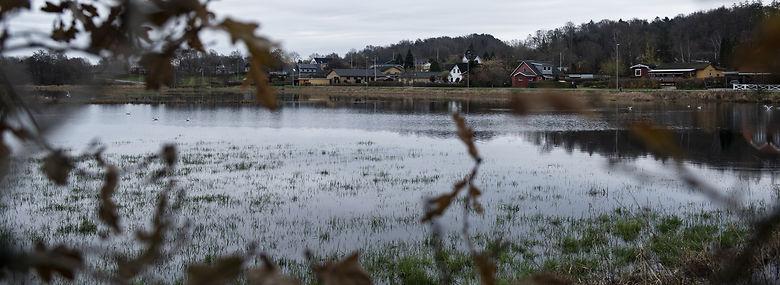 Gudenå går jævnligt over sine bredder, og nu skal der laves en samlet plan for at tackle oversvømmelserne mellem syv kommuner langs åen.<br />Foto: Christian Lykking, Ritzau Scanpix