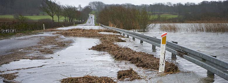 Øgede regnmængder og stigende grundvand har givet massive oversvømmelser denne vinter - her ved Brabrand Sø ved Aarhus. Nu vil miljøministeren hjælpe kommuner og vandselskaber med klimasikring.<br />Foto: Morten Rasmussen, Ritzau Scanpix