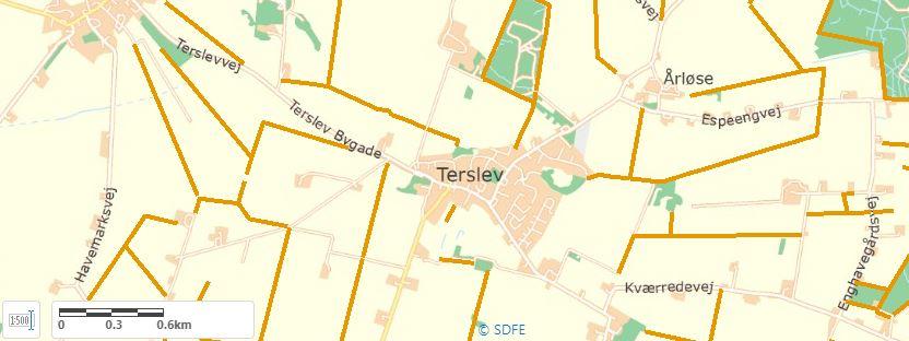 Der er et udbredt netværk af beskyttede diger i området omkring Terslev nord for Haslev.<br />Foto: Danmarks Arealinformation