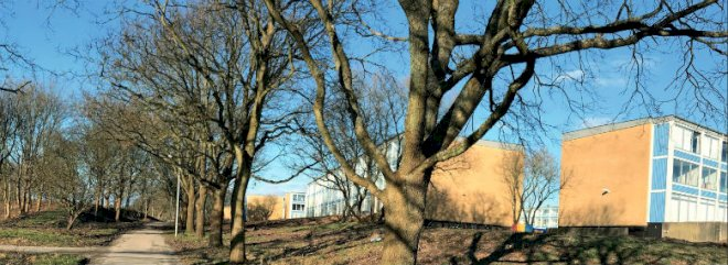 Esbjerg planlægger at rive fire boligblokke ned i udsat område