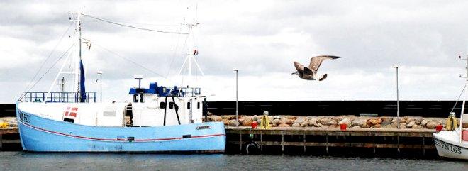 Læsø fik ingen løsning med hjem, men lån til at holde øen flydende