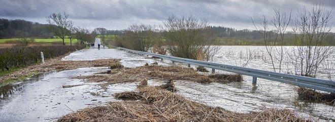 Aarhus-forslag om at forebygge oversvømmelser nu på banen