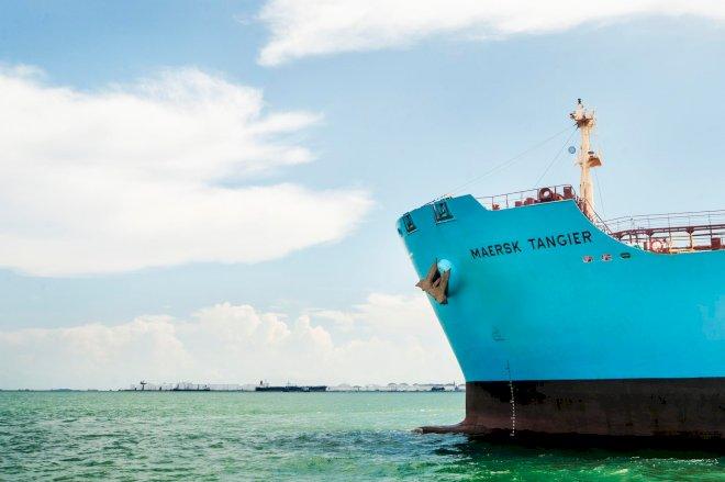 Mærsk bag nyt institut: Skal gøre skibsfart klimaneutral