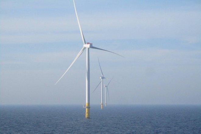 Shell-Eneco konsortium vinder hollandsk udbud foran Ørsted