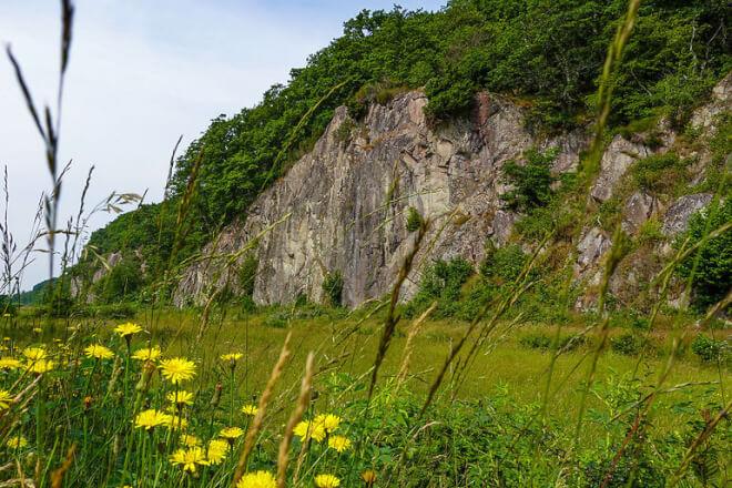 Kæmpe naturprojekt i Ekkodalen genskaber fordums natur