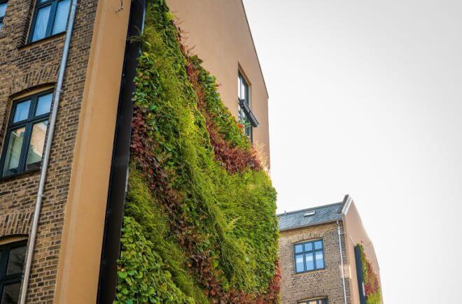 Vertikale haver tilfører levende gavlmalerier i grønt kvarter