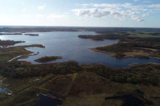 Aabenraa vil fiske 45 ton skidtfisk op af uklar sø