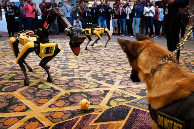 BP får robothund ombord