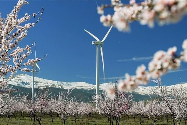 Spansk gigant vil investere 1.115 mia. kr. i vedvarende energi inden 2030