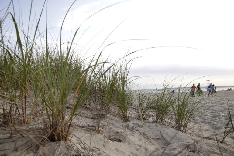 USA giver endeligt grønt lys til Vineyard Wind