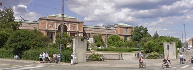 København roses som grøn rollemodel