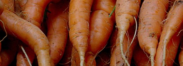 Flere gulerødder og færre pegefingre