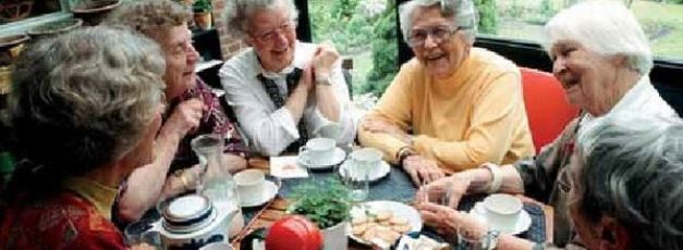 Hvilke pensionister tjente hvor meget?