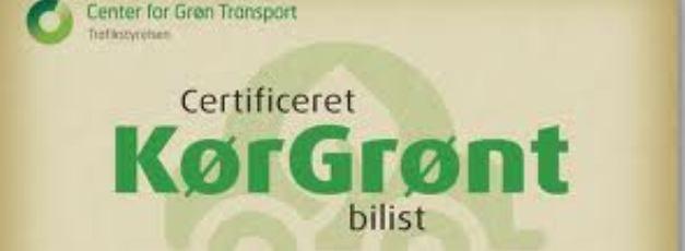 Sender medarbejdere på kursus i at spare - på grøn kørsel