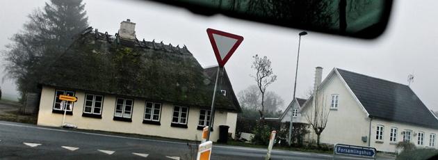Refsvindinge på Fyn. (Foto: Martin Lehmann, Polfoto)